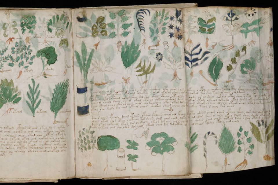 Imagen del Manuscrito Voynich.