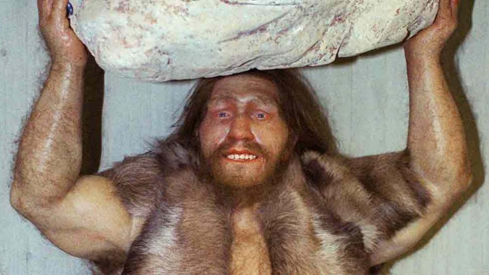 ADN. La imagen muestra una réplica de un hombre de Neandertal en el museo Neanderthal en Mettmann, Alemania.