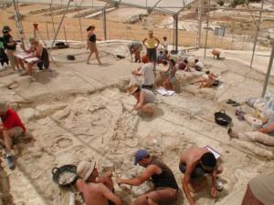 Trabajos en el yacimiento de Orce (Granada)